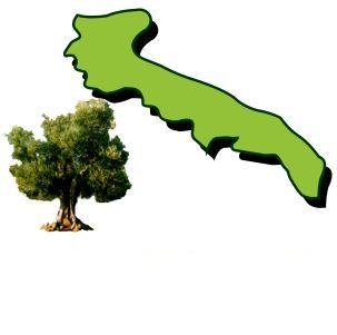 olivi-puglia