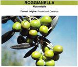 roggianella