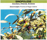 sinopolese