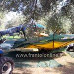 Scuotitore per olive