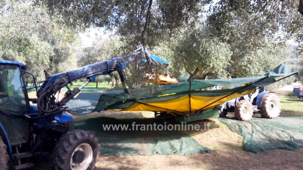 Scuotitore Per Olive Raccolta Meccanica Olive Pettini Vibranti Brucatori