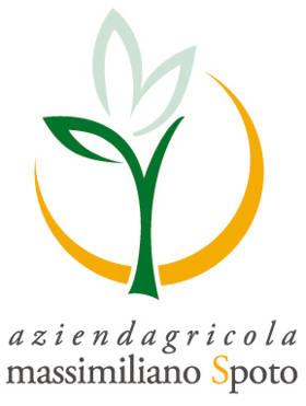 logo_azagr-spoto