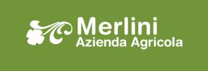 logo-az-merlini