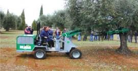 Scuotitori raccolta olive De Masi