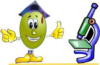 Ricerca e Università