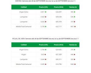 prezzo olio di oliva