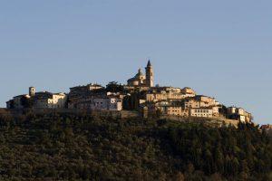 FestivOl, un weekend dedicato all'olio extravergine di oliva