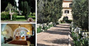 Azienda Agricola Marina Colonna