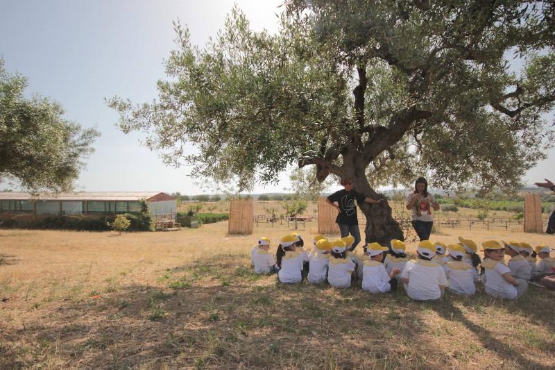 fattoria-didattica-case-don-ignazio
