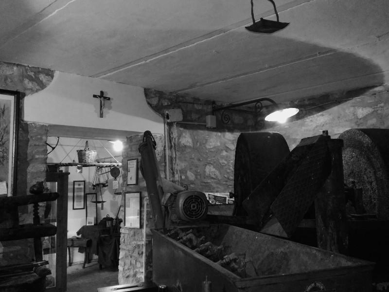 museo-ludovico-noia