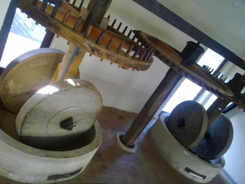 museo-scido-calabria
