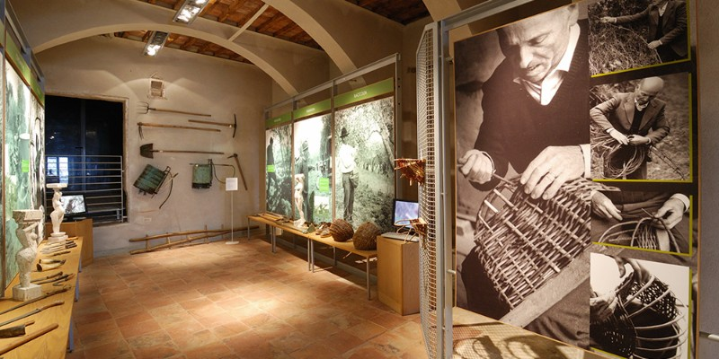 Museo-Frantoio-Antica-Grancia-Olio-toscana