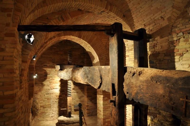 museo_olio-CantinArte