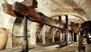 Museo dell'Olivo e dell'Olio - Moo - Musei Lungarotti Torgiano