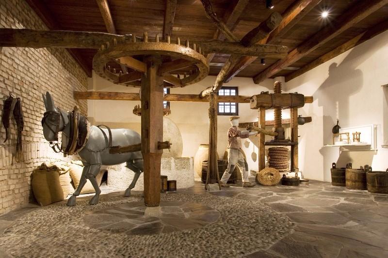 33229_Museo-Frantoio-olio-imperia