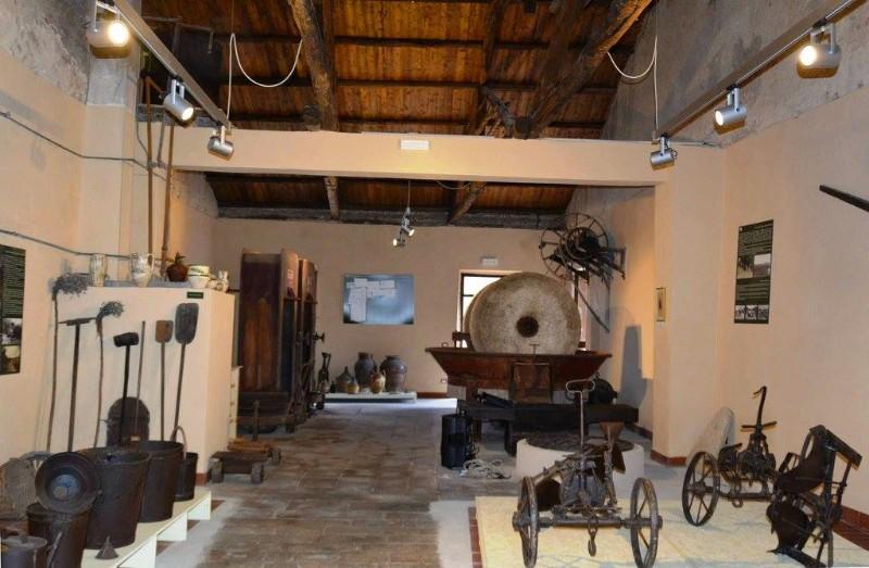 museo-ricadi