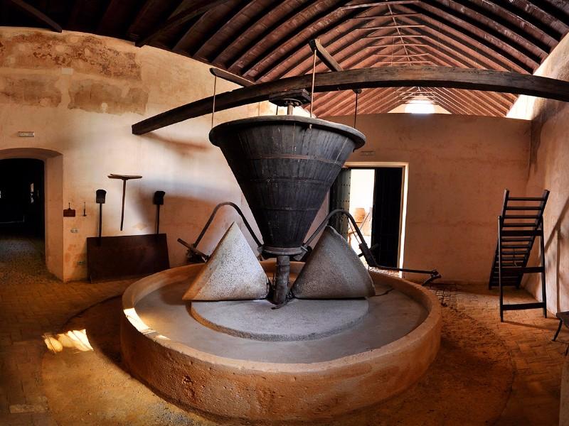 museo-Hacienda-Guzmán
