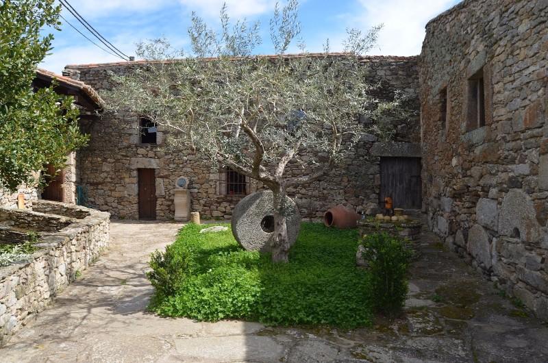Museo-del-Aceite-El-Lagar-del-Mudo-Espana