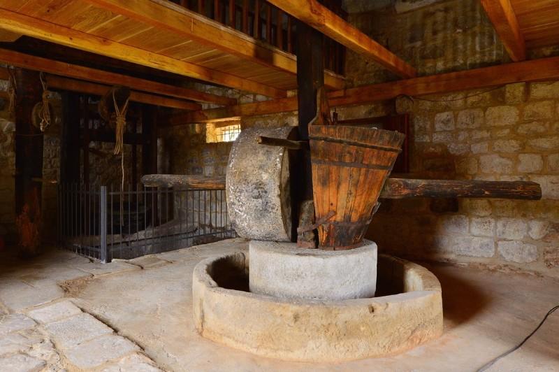 olive-oli-museum-uja-dalmazia