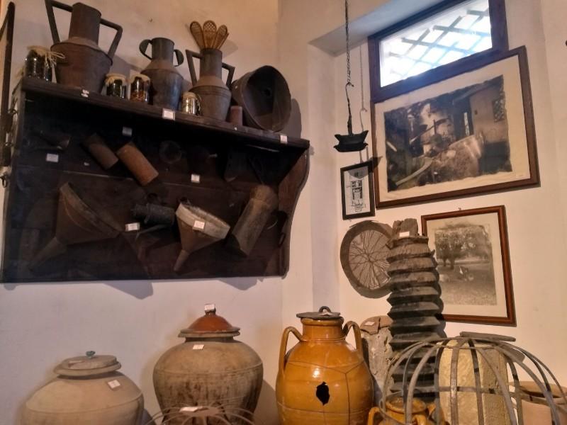 museo-zungri-1