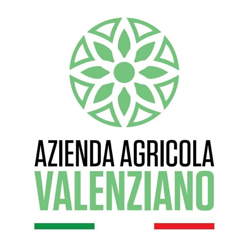 logo-nuovo-azienda-agricola-valenziano