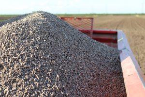 I vantaggi della sostanza organica nella concimazione dell'Olivo